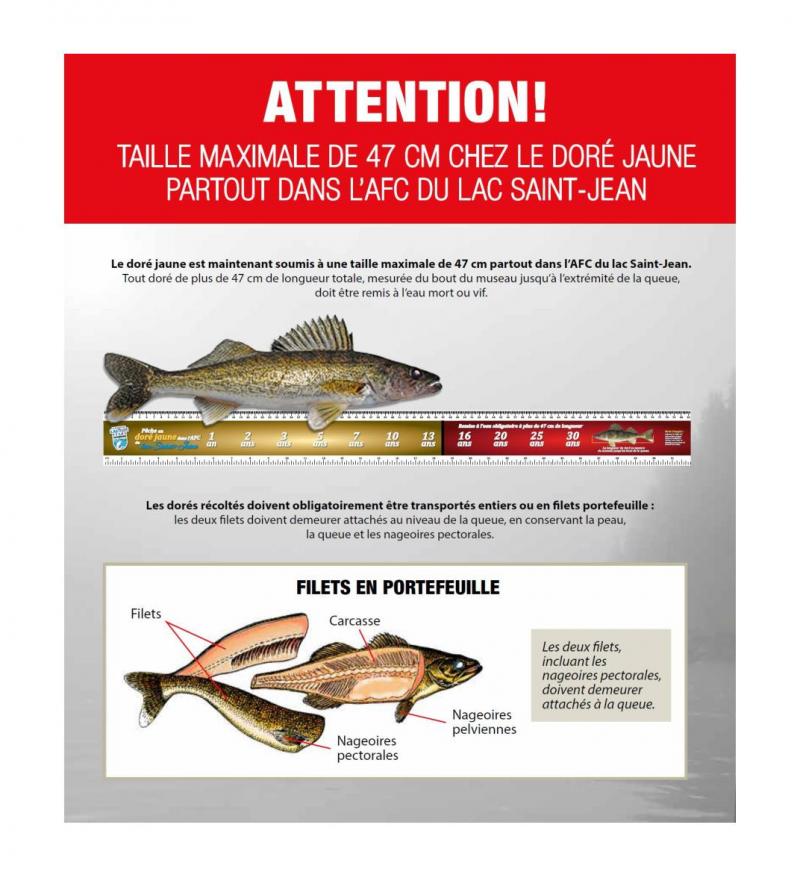 limites-de-taille-et-filets-en-portefeuille-pêche-CLAP@2x
